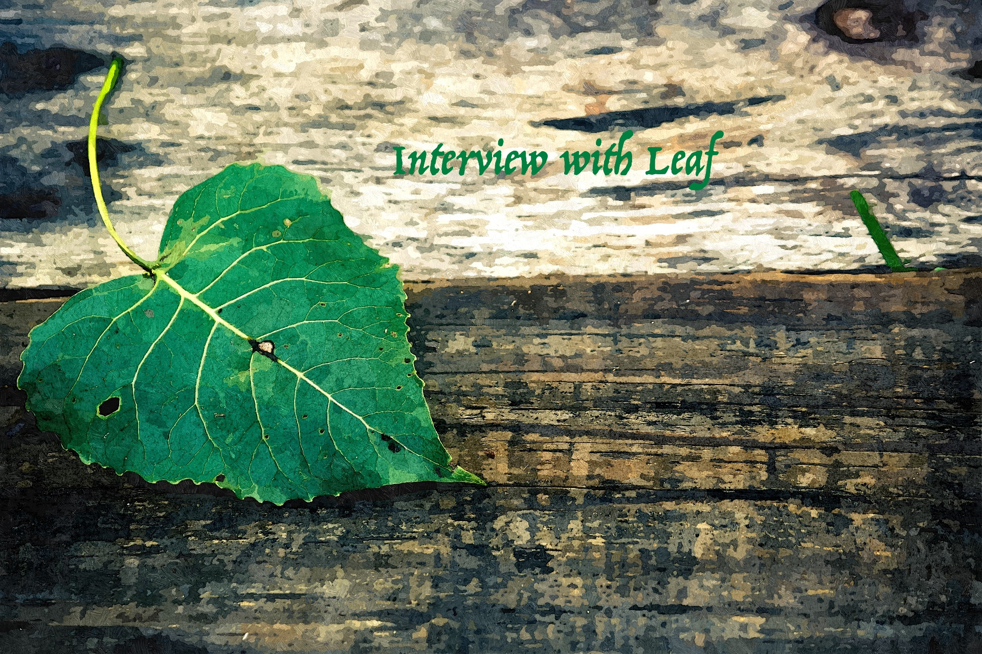 interview with leaf2_FotoSketcher